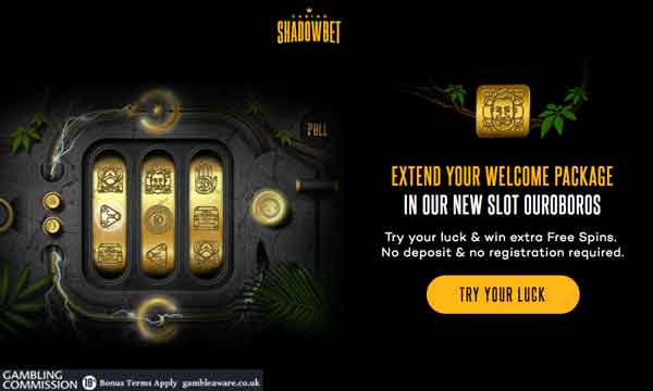 Free Spins 54638